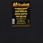 Summer Moon (Bob Sinclar Remix Main) by Africanism All-Stars