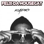 Radio (Shinichi Osawa Edit) by Felix Da Housecat