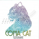 J-Coma-Cat-by-Tensnake